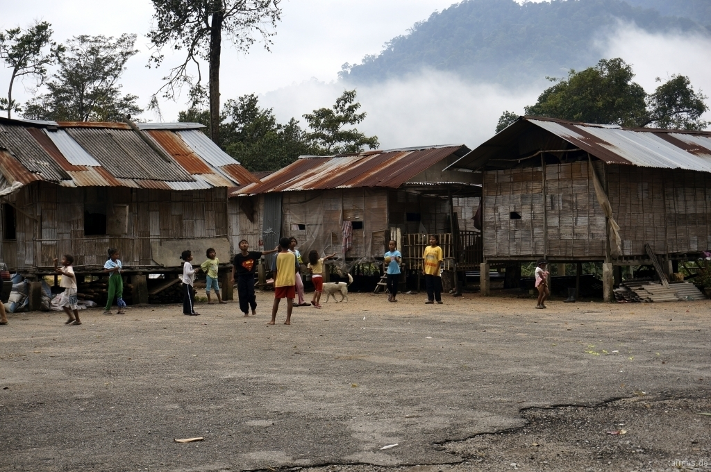 Orang Asli Village in Cameron Highlands