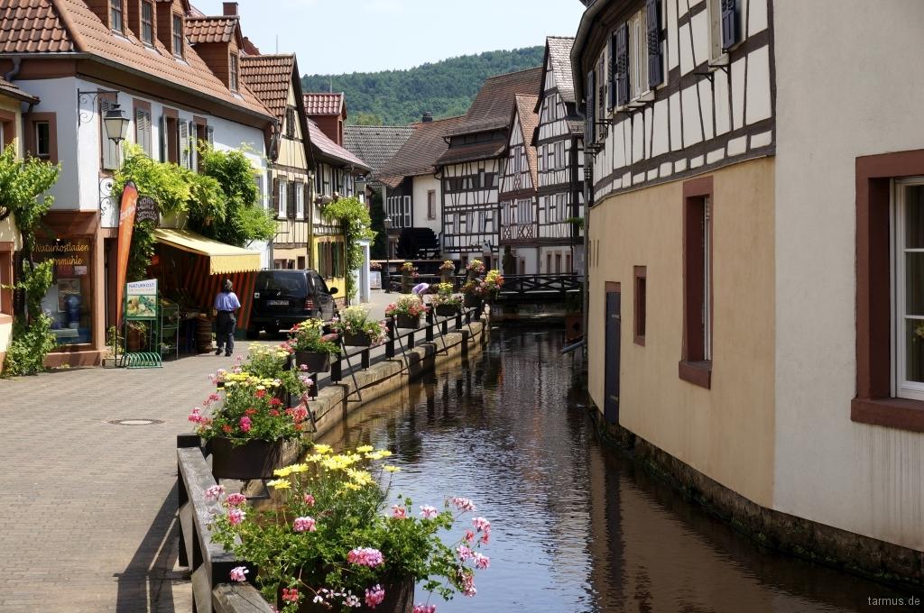 2014_06_12-Germany_Pfalz_Trekking-005