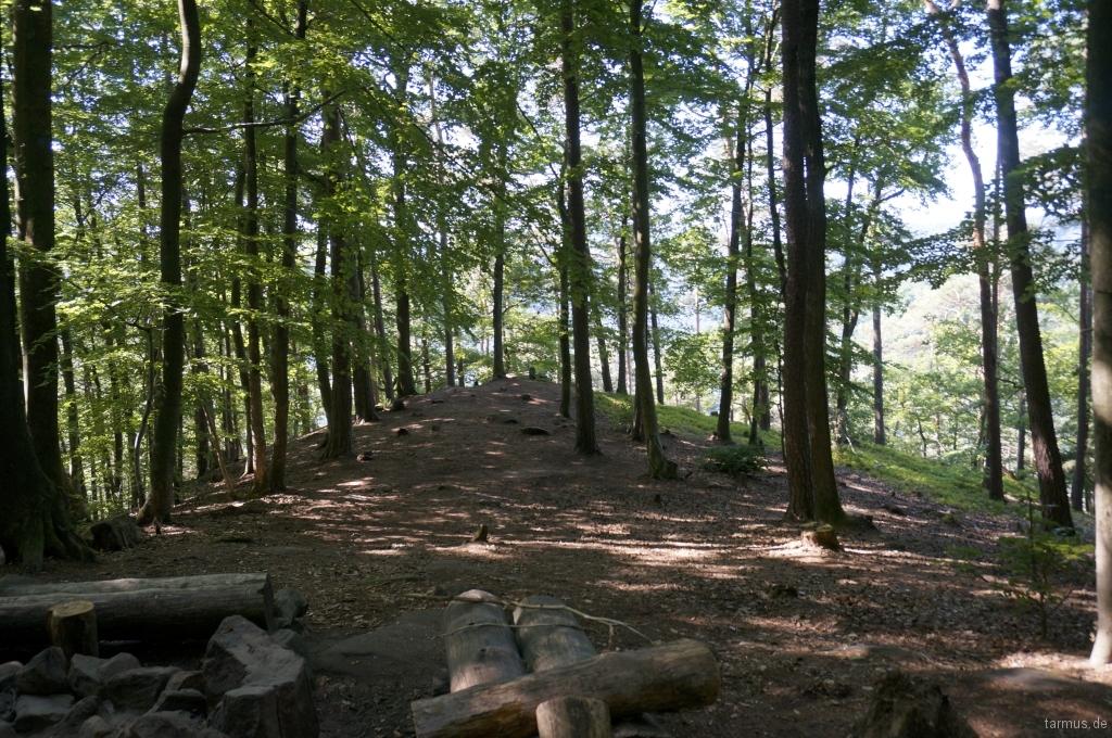 2014_06_13-Germany_Pfalz_Trekking-023