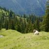 Hiking to Schönberg in Liechtenstein 10