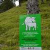 Hiking to Schönberg in Liechtenstein 34