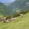 Hiking Princess Gina Trail in Liechtenstein 06