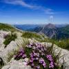 Hiking Princess Gina Trail in Liechtenstein 31