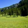 Hiking along the Valünerbach in Liechtenstein 07