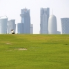 2017_02_23-Qatar_Doha_58