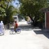The Locals of Bodufolhudhoo, Maldives
