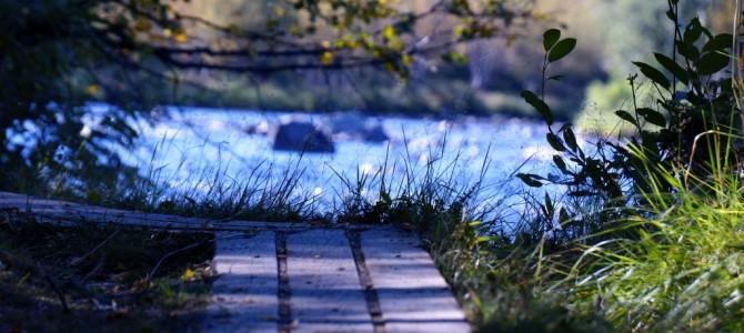 Part 2: Hiking Kungsleden in Autumn – Abisko – Abiskojaure